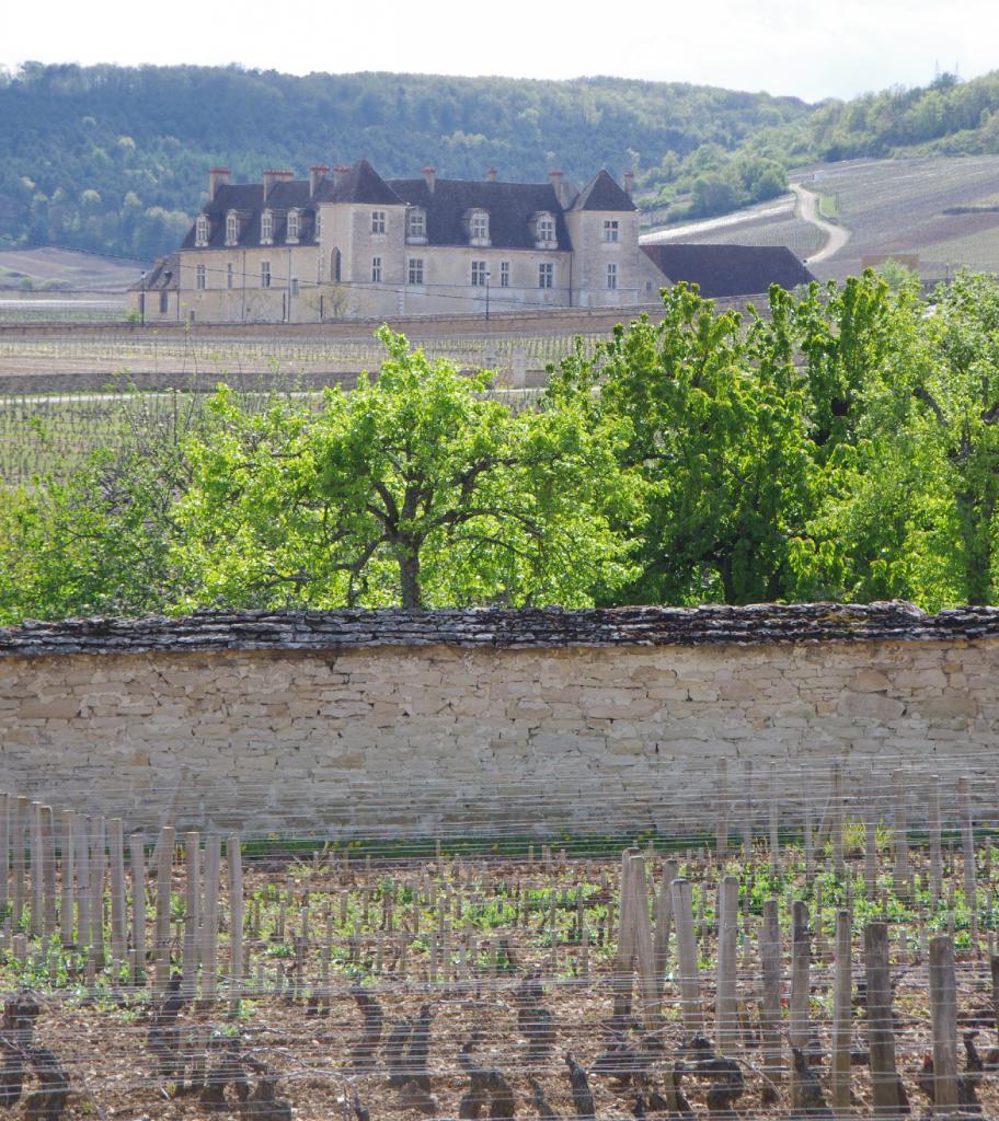 Chateau du Clos Vougeot